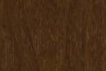 Берёза морённая (1)