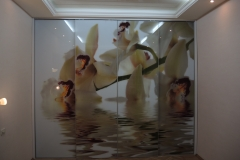 встроенный шкаф с фотопечатью орхидеи